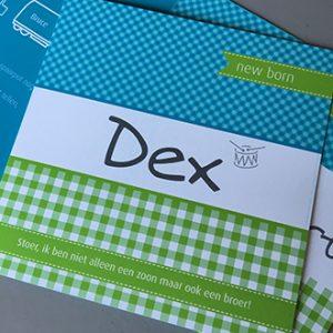 dex-klein