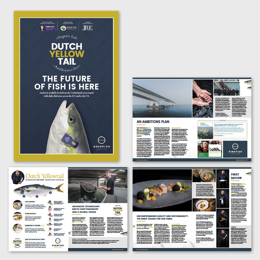 Magazine Kingfish